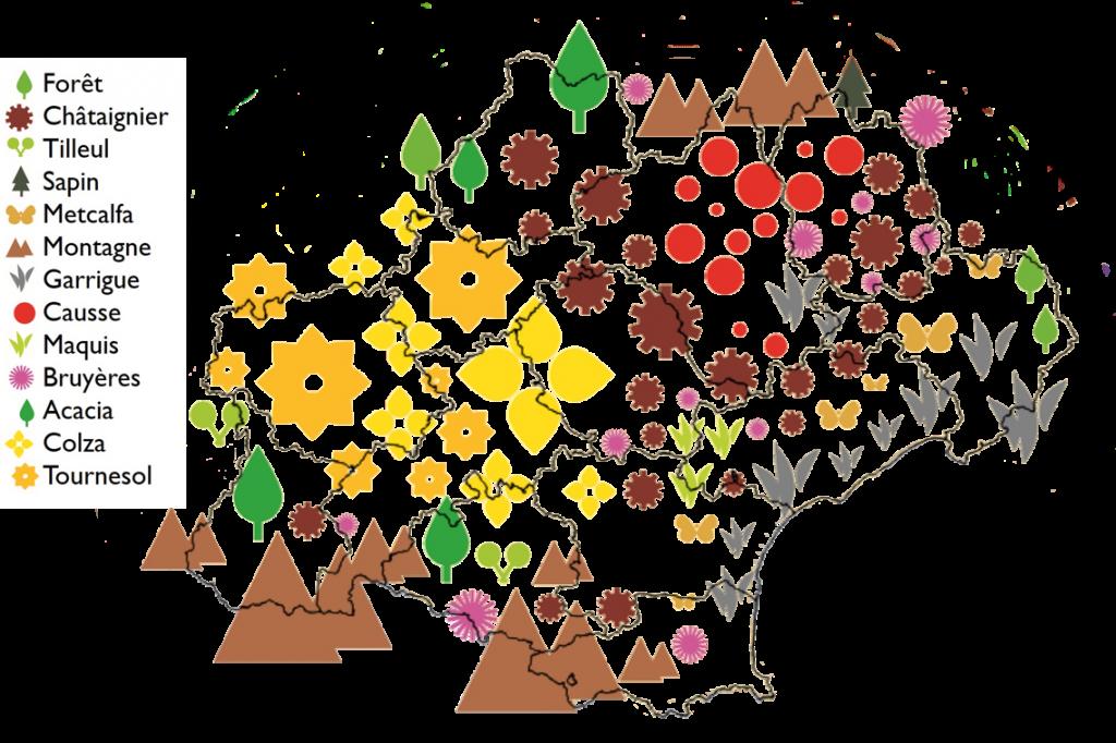 Carte des miellées en Occitanie